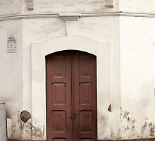 Brown Wooden Door by rhamm