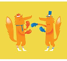 Posh Foxes like to Box while wearing Socks Photographic Print