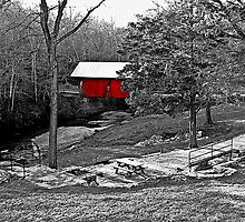*The Red Covered Bridge* by Darlene Lankford Honeycutt