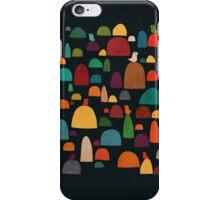 The Zen Garden iPhone Case/Skin