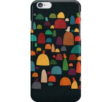 The Zen Garden iPhone Case/Skin