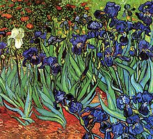'Blue Irises' by Vincent Van Gogh (Reproduction) by Roz Abellera