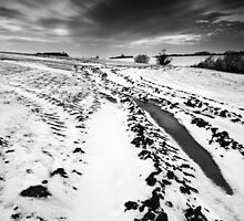 Scarred Land BW by Andy Freer