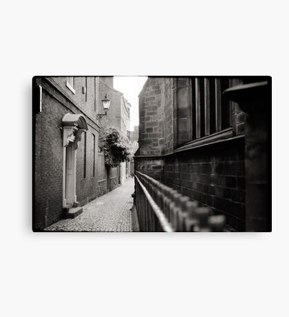Up Our Alley Canvas Print