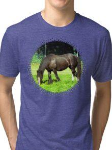 crunchie Tri-blend T-Shirt
