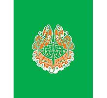 Irish shield  Photographic Print