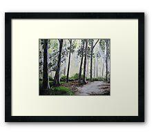 Morning breeze Framed Print