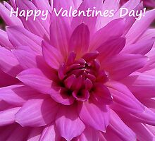 Dahlia - Happy Valentines Day! by Evelyn Laeschke