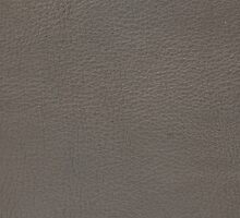 Grey leather texture closeup by homydesign