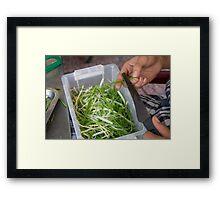 shredding beans Framed Print