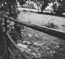 Black & White countryside by SassySnark