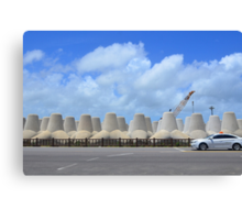 Man-made Land Canvas Print