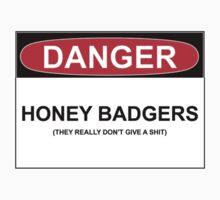 DANGER: HONEY BADGERS (THEY REALLY DON'T GIVE A SHIT) by Bundjum