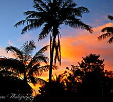 Paradise in the Pilbara by Kate0011