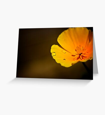 Garden flower with Bee Greeting Card