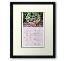 2016 Succulent Wall Calendar Framed Print
