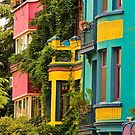 Colorful Homes, Istanbul, Turkey by Barbara  Brown