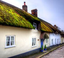 Tolpuddle Cottages by Stephen Smith