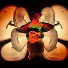 """Light butterfly 3 by Antonello Incagnone """"incant"""""""