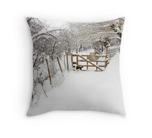 Can We Go for Walkies Throw Pillow