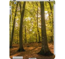 scenic autumn forest iPad Case/Skin