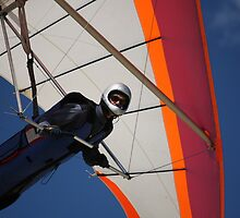 Hang-Gliding On A Summer Breeze by reflector