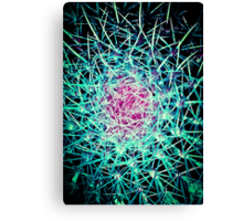 EXPLOSION OF LINES!!! Flowers Canvas Print
