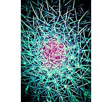 EXPLOSION OF LINES!!! Flowers Photographic Print