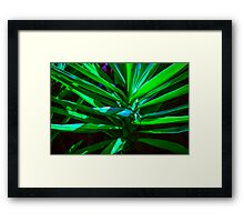 MIX OF TONES OF GREEN!!! Flowers Framed Print