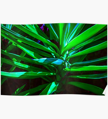 MIX OF TONES OF GREEN!!! Flowers Poster