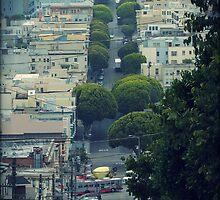 San Fransisco City by Chris Roberts
