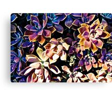 COLOURFUL COMPOSITIONS OF FLOWERS!!! Flowers Canvas Print