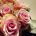 Roses by SassySnark