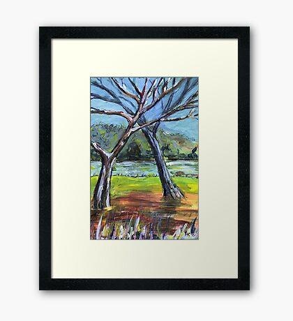 Sketching Trees Framed Print