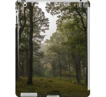 Scenic oak forest view with path iPad Case/Skin