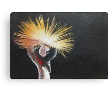 Crested Crane Canvas Print