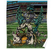 Seahawks vs Broncos Poster