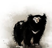 Sloth bear by didelphis