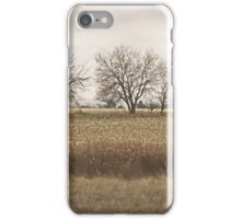 End of Autumn iPhone Case/Skin