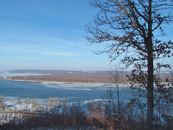 Mississippi River Overlook  by lorilee