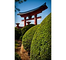 The Rolling Bushes of the Torii Gate Photographic Print