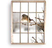 Bird at my Window Canvas Print