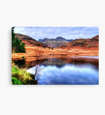 Blea Tarn, Lake District Canvas Print