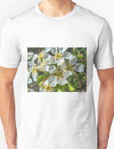Peach Blossom Unisex T-Shirt