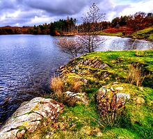 Tarn Hows by English Landscape Prints