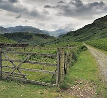 Near Borrowdale by FyldePhotos