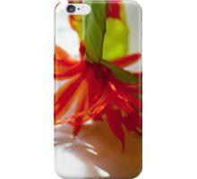 Flowering cactus iPhone Case/Skin