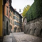 Street of Bergamo by Alexandra Vaughan