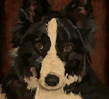 Jasper - border collie by Carl Conway