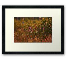 """""""Little Beauties"""" Framed Print"""